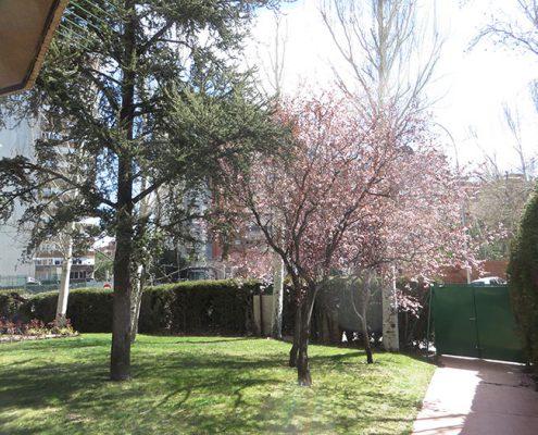 La primavera llega al jardín de EnjoyWorking Creative Coworking